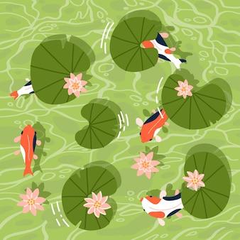Widok z góry na ryby koi lub azjatyckie karpie pływające w stawie z liliami wodnymi