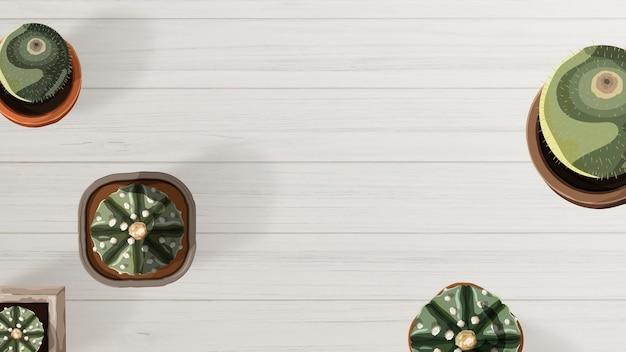 Widok z lotu ptaka kaktusa na białej tapecie stołu