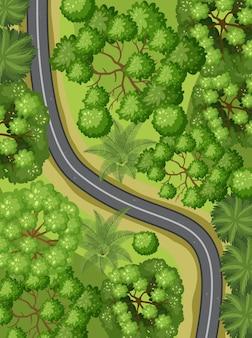 Widok z lotu ptaka z drogą przez leśny krajobraz