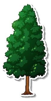 Wiecznie zielone drzewo z naklejką z zielonymi liśćmi na białym tle