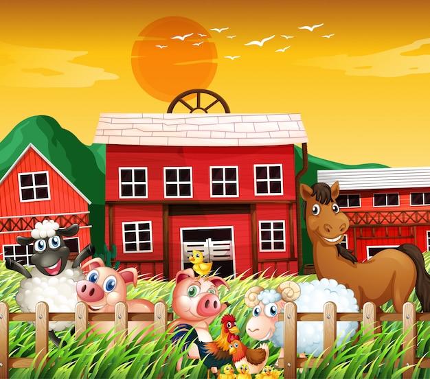 Wiejska farma ze sceną zwierząt