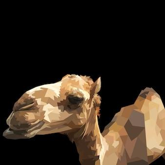 Wielbłąd odizolowywający na czarnym tle