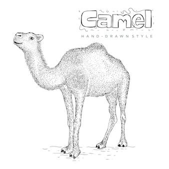 Wielbłąd ręcznie rysowane ilustracja zwierząt