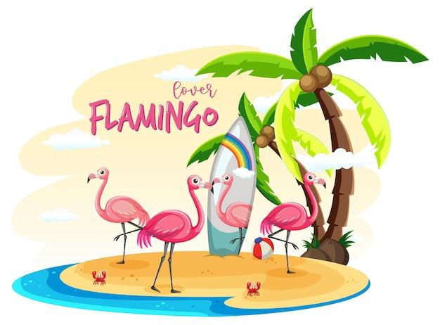 Wiele flamingów na wyspie na białym tle