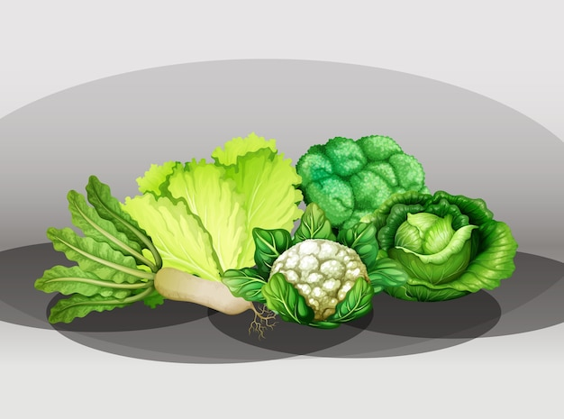 Wiele różnych warzyw w grupie