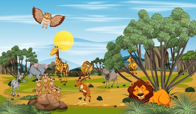 Wiele różnych zwierząt na scenie leśnej