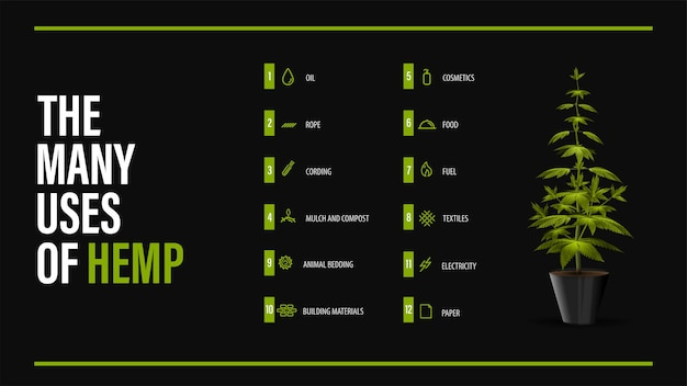 Wiele zastosowań konopi, czarny plakat z zielonym krzewem konopi i infografika o zastosowaniach konopi