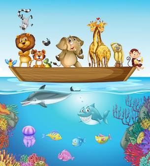 Wiele zwierząt na drewnianej łodzi