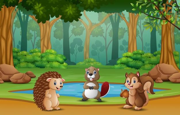 Wiele zwierząt stoi przy małym stawie