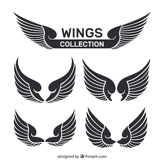 Wielka kolekcja płaskich skrzydeł