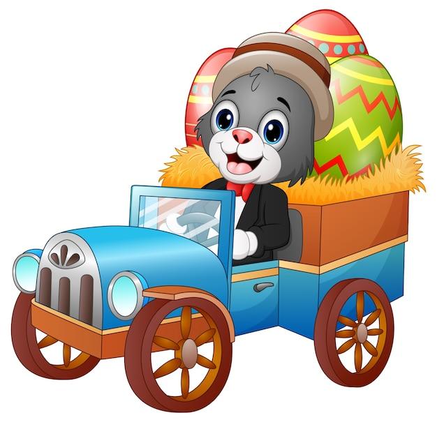Wielkanocny królik jedzie samochód niesie easter jajka