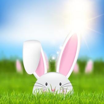 Wielkanocny królik w trawie