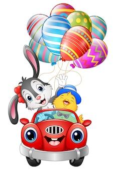 Wielkanocny królik z kurczątkami jedzie samochód niesie easter jajka