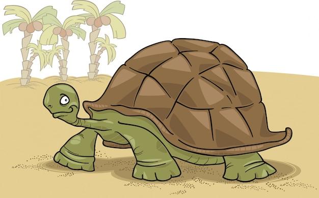Wielki żółw