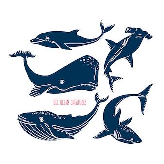 Wielkie stworzenia oceaniczne zwierząt