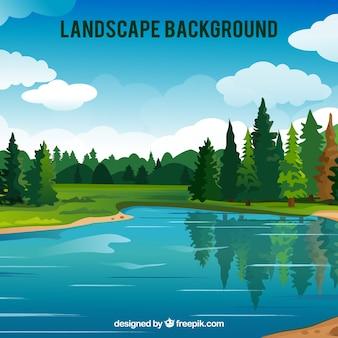 Wielkie tło lasu z jeziorem