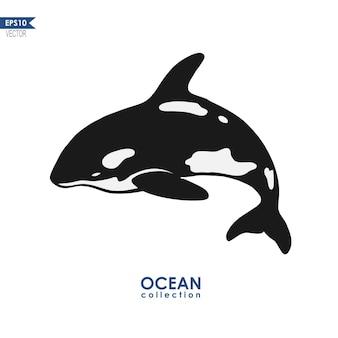 Wieloryb orca na białym tle na ilustracji wektorowych biały wieloryb