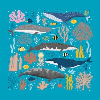 Wieloryby i różne kolorowe wodorosty i korale. piękny plakat pod morzem z wielorybami