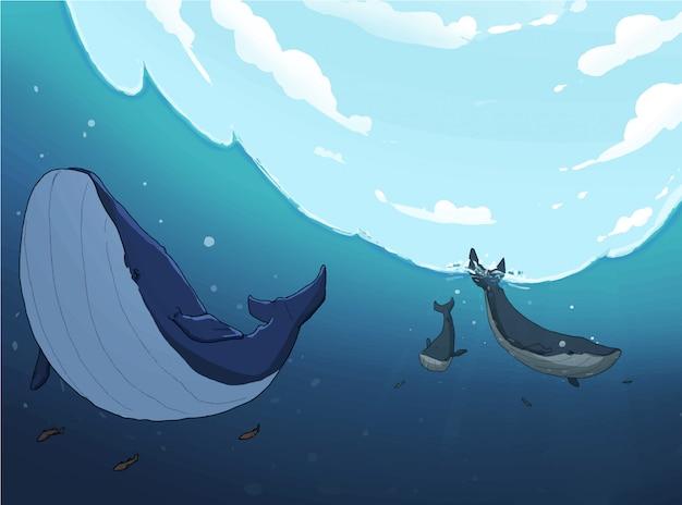 Wieloryby w morzu