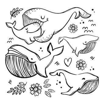 Wieloryby w szkicowanym stylu. monochromatyczne ręcznie rysowane clipartów zestaw ilustracji