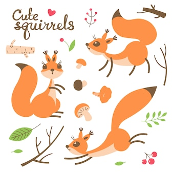 Wiewiórka kreskówka. małe śmieszne wiewiórki. ilustracji wektorowych