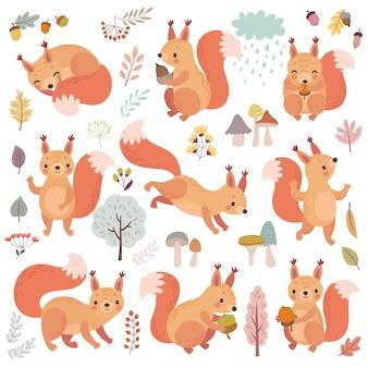 Wiewiórka zestaw ręcznie rysowane styl śliczne leśne postacie grające spanie, relaks i zabawę ilustrację