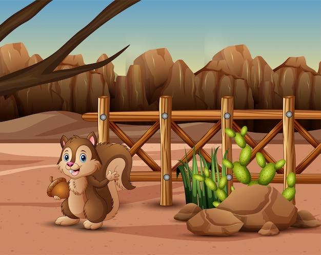 Wiewiórka żyjąca w zoo