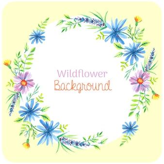 Wildflower tła akwarela