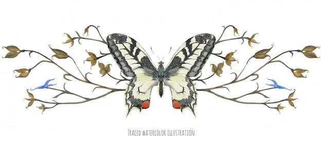 Winieta z motylem machaon i roślinami