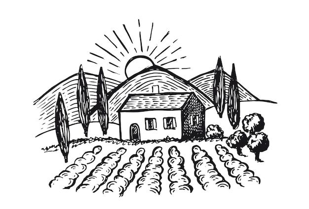 Winnice krajobraz plantacji winorośli ręcznie rysowane ilustracje