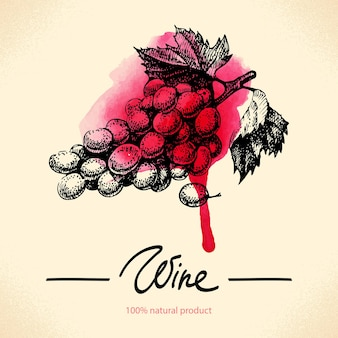 Wino tło. akwarela ręcznie rysowane ilustracja
