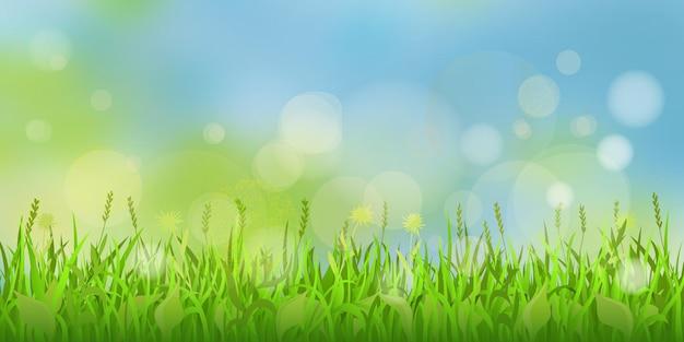 Wiosenna łąka na tle słonecznego nieba