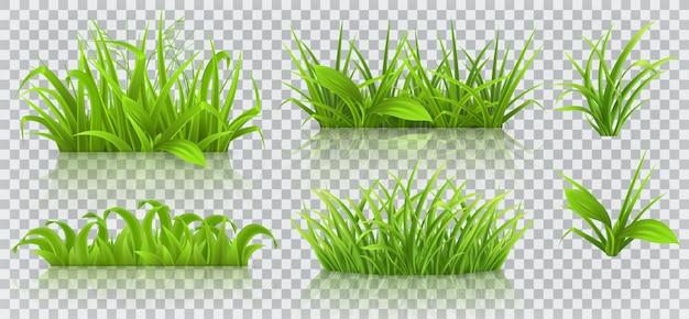 Wiosenna trawa 3d na białym tle
