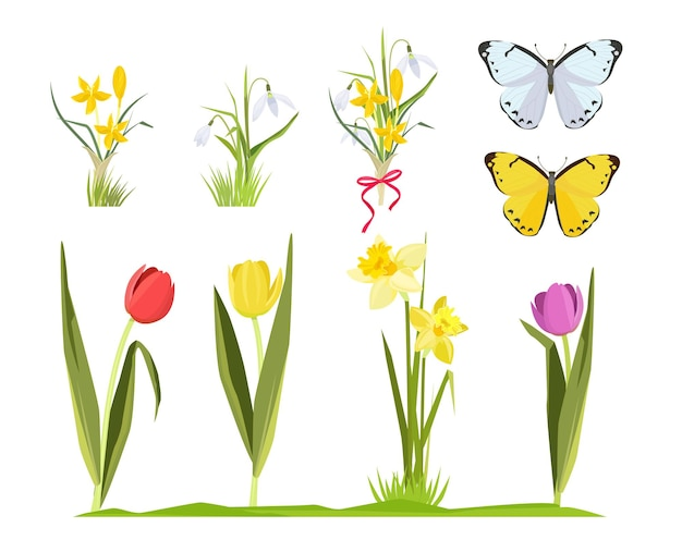 Wiosenne kwiaty. kwiatowy ogród kolekcja bukiet kwiatów kreskówek zestaw tulipanów chamomiles.