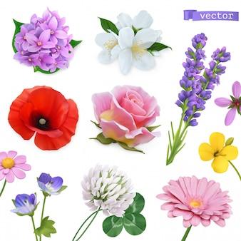 Wiosenne kwiaty. liliowy, jaśminowy, oppy, róża, lawenda, koniczyna, rumianek. 3d realistyczny zestaw ikon