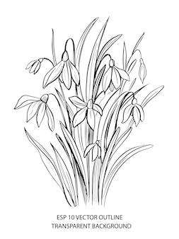 Wiosenne kwiaty. ręcznie rysowane kontur. ręcznie rysowane ilustracja na białym tle
