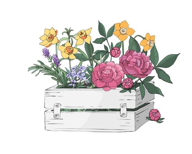 Wiosenne kwiaty w białym, drewnianym pudełku w ogrodzie