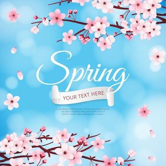 Wiosenne kwiaty wiśni w tle