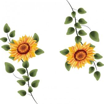 Wiosenne kwiaty z liśćmi