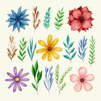 Wiosenne liście i kolorowe kwiaty