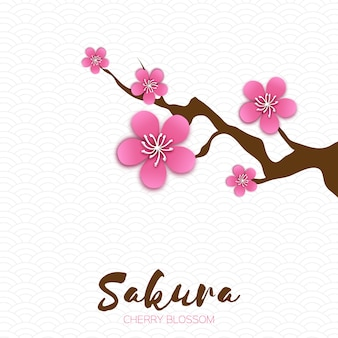 Wiosenny kwiat wiśni. różowa piękna gałąź sakkury z kwiatami papercraft.