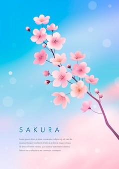 Wiosenny kwiat wiśni