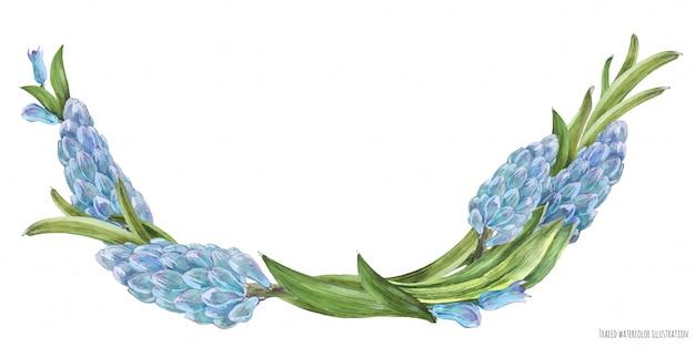 Wiosenny łuk akwarela z kwiatami hiacyntu