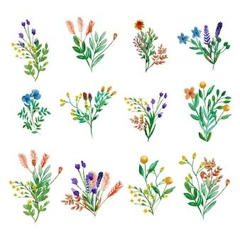 Wiosenny zestaw kwiatów i liści