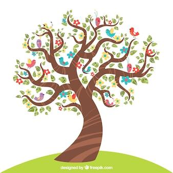 Wiosna drzewa w tle