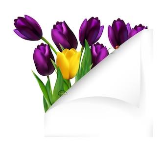 Wiosna kwiatu tło z fałdowym papierem