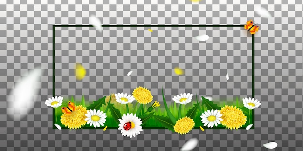Wiosna lub lato. kwiaty i trawa na przezroczystym tle do wystroju wnętrz