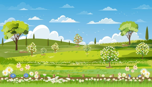 Wiosna natura krajobraz z pola trawy, błękitne niebo i chmury.