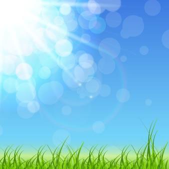 Wiosna zielone tło