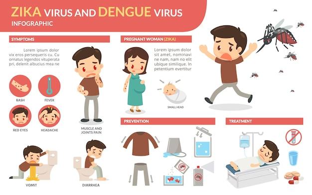 Wirus zika i infografika wirusa dengi